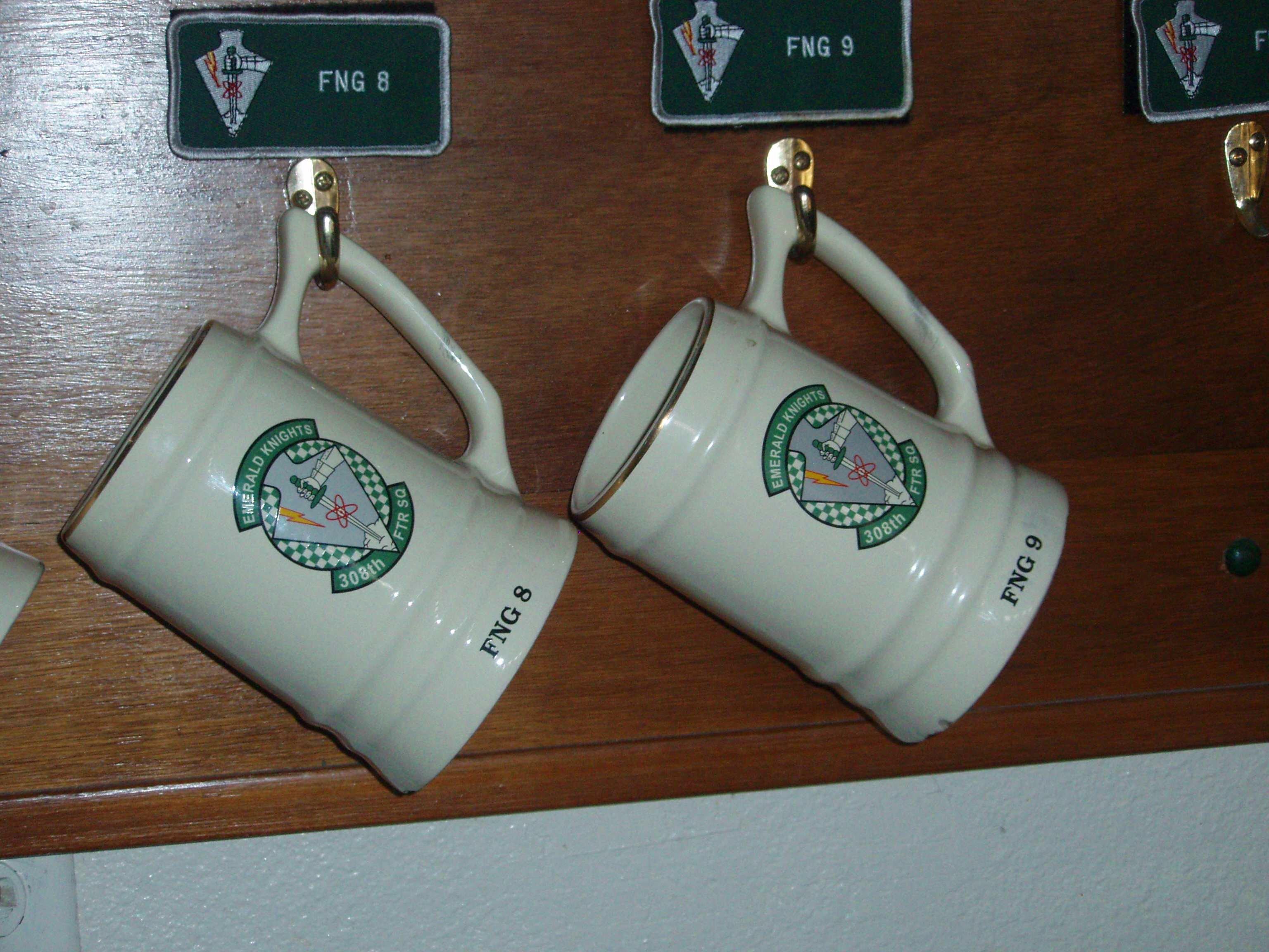 Close-up of pilot mugs in training squadron